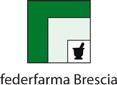 federfarma brescia titolari farmacia